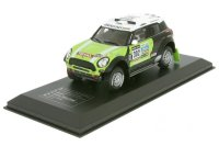 Mini A114 racing n. 302 Rallye Dakar 2013